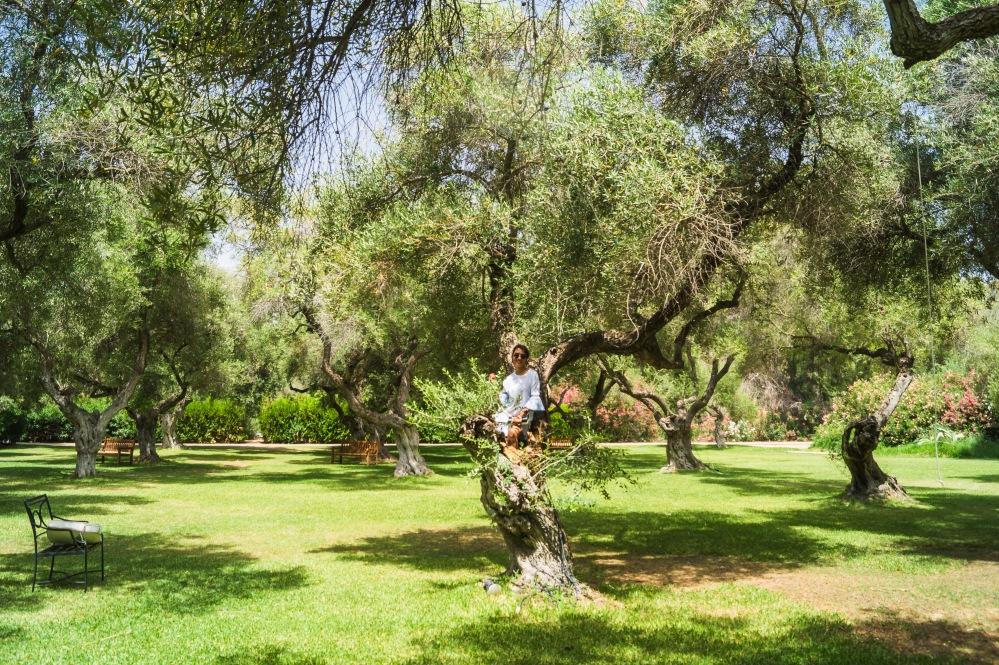 cortijo fain arcos gardens (28)